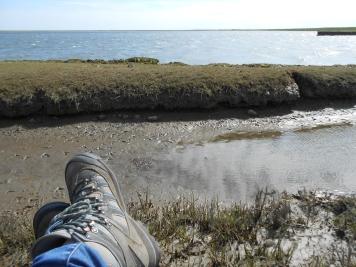 Mudflats Danmark