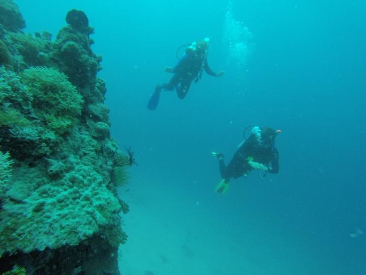 Drift diving along a coral wall
